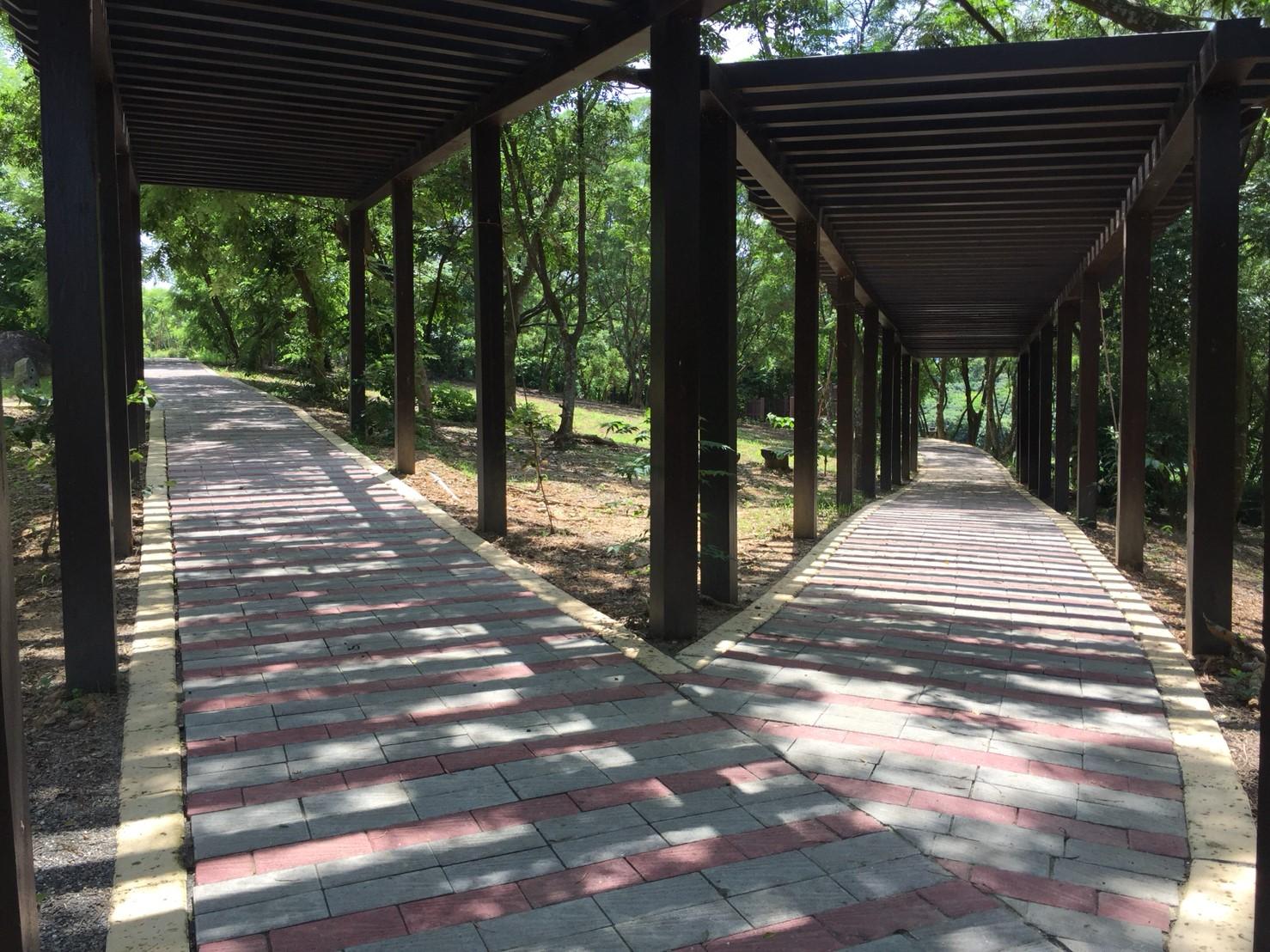 白河蓮花公園